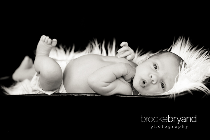 Brooke Bryand Photography | San Francisco Newborn Photographer